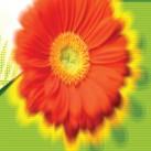 лого выставки5-01.jpg