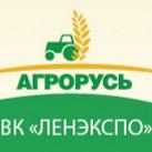 лого выставки 27-01.jpg